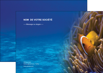 impression flyers paysage belle photo nemo poisson MLGI33449