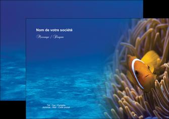 exemple flyers paysage belle photo nemo poisson MLGI33451