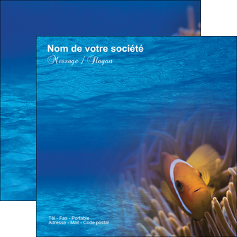 faire flyers paysage belle photo nemo poisson MLGI33475