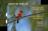 modele carte de visite paysage nature parc naturel animaux parc naturel des oiseaux MLIP34279