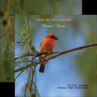 creation graphique en ligne flyers tourisme  nature parc naturel animaux parc naturel des oiseaux MLGI34285