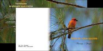 impression depliant 2 volets  4 pages  paysage nature parc naturel animaux parc naturel des oiseaux MLGI34287