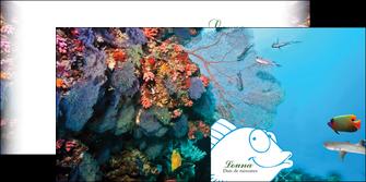 cree depliant 2 volets  4 pages  chasse et peche plongeur corail poissons MIS34427