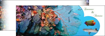 exemple depliant 2 volets  4 pages  chasse et peche plongeur corail poissons MIS34439