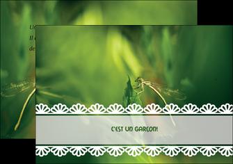 creer modele en ligne flyers faire part de naissance carte pour naissance feuilles MIF34459