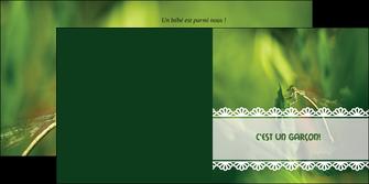 imprimerie depliant 2 volets  4 pages  faire part de naissance carte pour naissance feuilles MIF34465