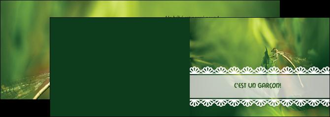 modele depliant 2 volets  4 pages  faire part de naissance carte pour naissance feuilles MLIG34473