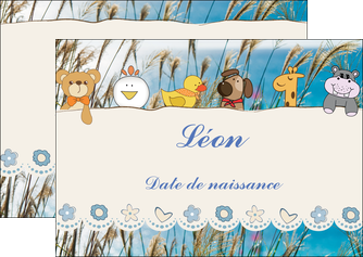 exemple flyers faire part de naissance carte de naissance carton invitation naissance MLIG34833