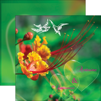 exemple flyers nature colore couleur MLGI34947
