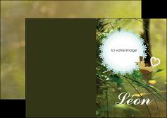 exemple depliant 2 volets  4 pages  faire part de naissance vert nature MLIG35355