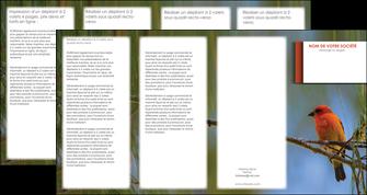 modele depliant 4 volets  8 pages  parc oiseaux colore MLGI36305
