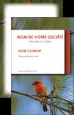 personnaliser modele de carte de visite parc oiseaux colore MLGI36327