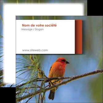 creation graphique en ligne flyers parc oiseaux colore MLGI36331
