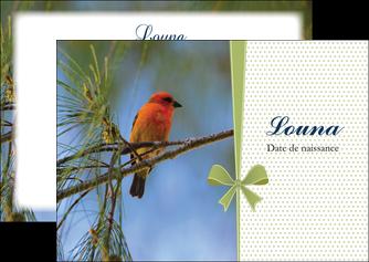 cree flyers oiseau nature arbre MIF36345