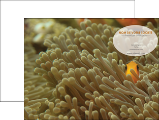 impression pochette a rabat animal nemo macro original MLGI36427