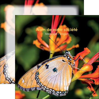 modele flyers belle photo de papillon macro couleur MLGI36977
