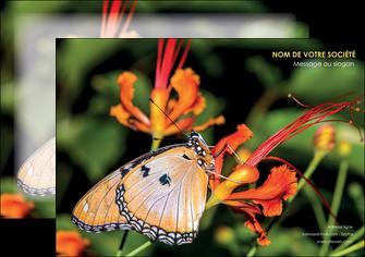 realiser affiche belle photo de papillon macro couleur MLGI36985