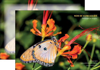 faire affiche belle photo de papillon macro couleur MLGI36991