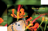 cree carte de visite belle photo de papillon macro couleur MLGI37005