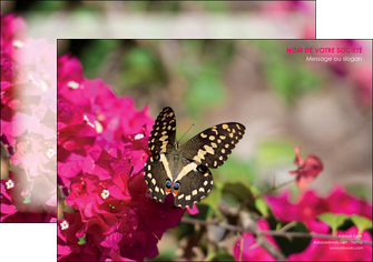 realiser affiche agriculture papillons fleurs nature MLGI37123