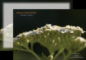 exemple flyers fleuriste et jardinage plantes cactus fleurs MLGI37655