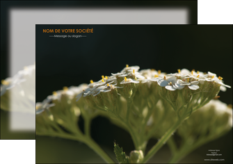 imprimer affiche fleuriste et jardinage plantes cactus fleurs MLGI37669