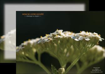 modele affiche fleuriste et jardinage plantes cactus fleurs MLGI37679