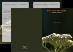 cree depliant 2 volets  4 pages  fleuriste et jardinage plantes cactus fleurs MLGI37685