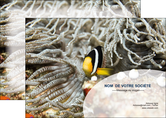 modele flyers animal poisson plongee nature MLGI37895