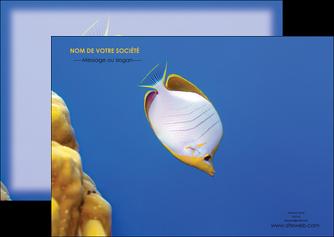 modele flyers poisson et crustace poissons mer ocean MIF38889