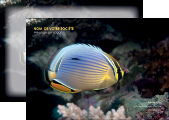 modele en ligne flyers animal poisson animal nature MLGI38929