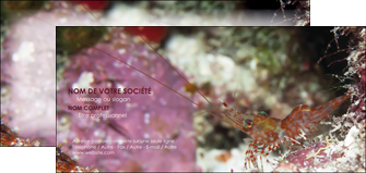personnaliser modele de carte de correspondance poisson et crustace crevette crustace animal MIS38991