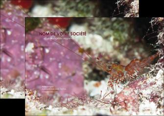 imprimer flyers poisson et crustace crevette crustace animal MIS39003