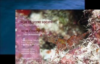 modele en ligne carte de visite poisson et crustace crevette crustace animal MIS39005