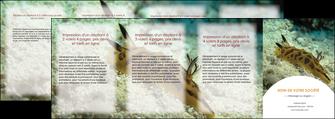 personnaliser modele de depliant 4 volets  8 pages  animal crevette crustace animal MIF40133