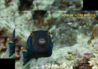 realiser flyers animal poisson sous marine nature MIF40211