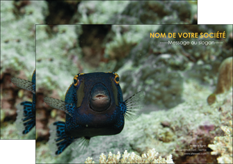 modele en ligne affiche animal poisson sous marine nature MIF40213