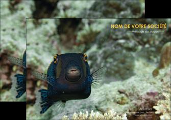 imprimerie flyers animal poisson sous marine nature MIF40231